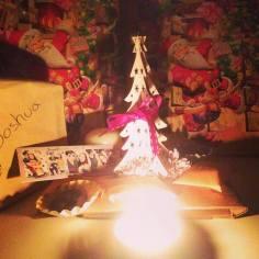 ma vie nippone - une geisha, de l'or et des toris!