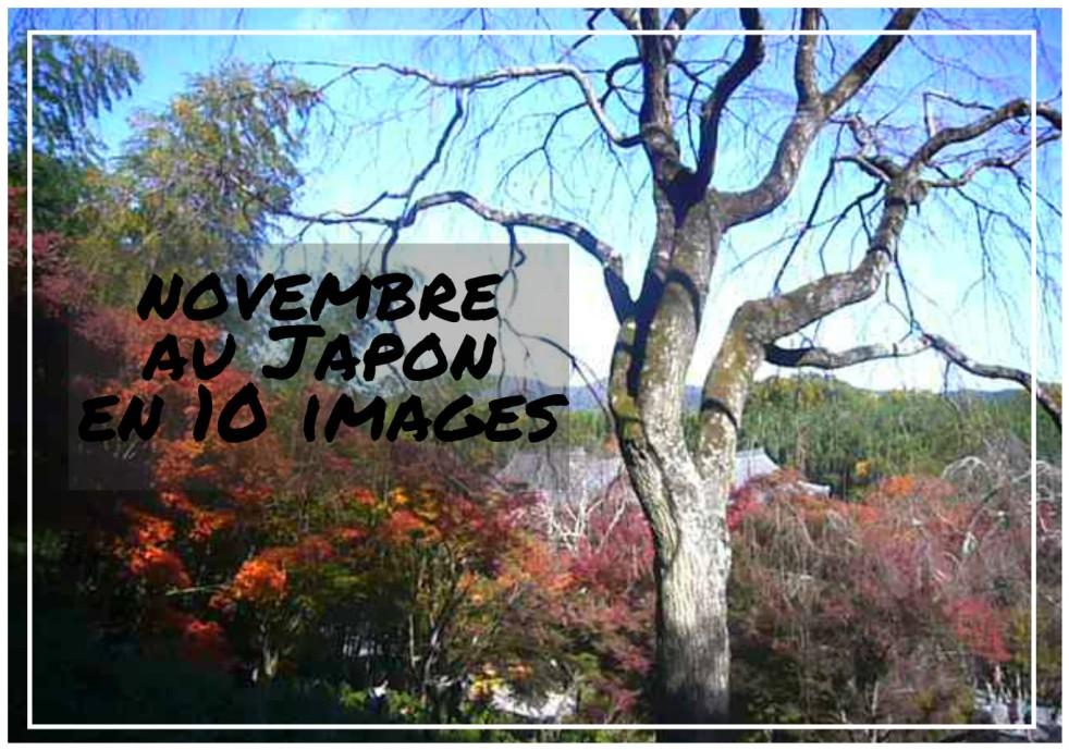 novembre au Japon en 10 images