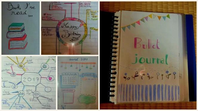 Ma vie nippone en janvier 2017: lectures, sport et voyages bullet journal