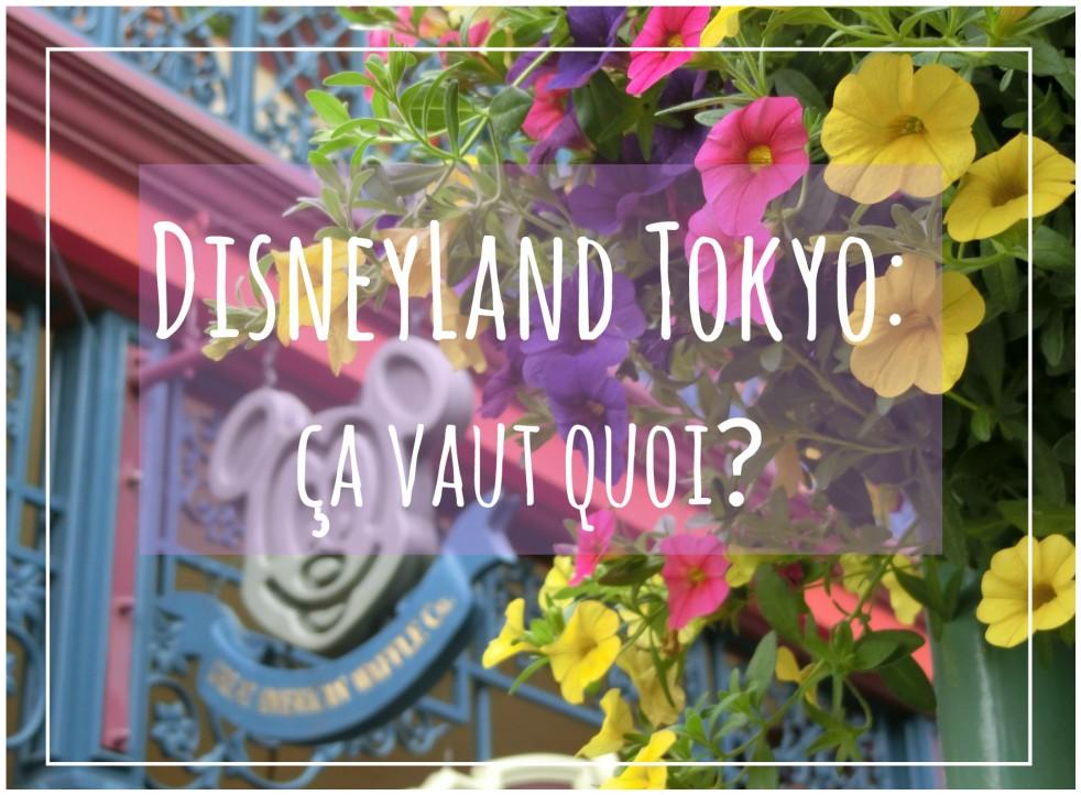 disneyland Tokyo comparaison orlando paris parc park souvenir personnages attractions