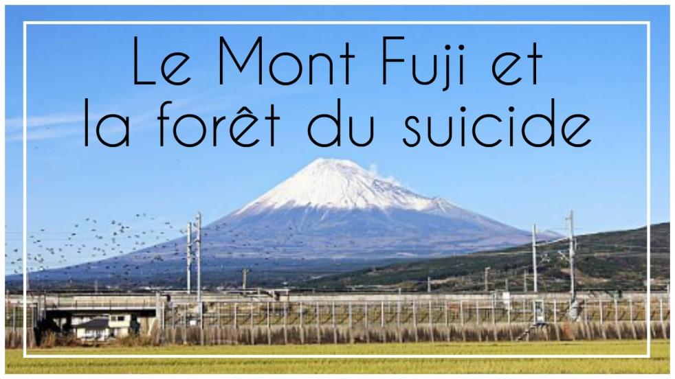 Le Mont Fuji et la forêt du suicide Aokigahara Tokyo bus aller