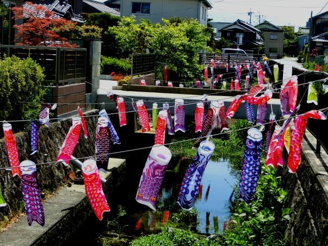 Mai au Japon en 10 images Tokyo Kyoto Toei Studio Disney Odaiba Fuji Hérisson Café Harry Hikone